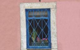 2020. HAYEA : Desde mi ventana - self production